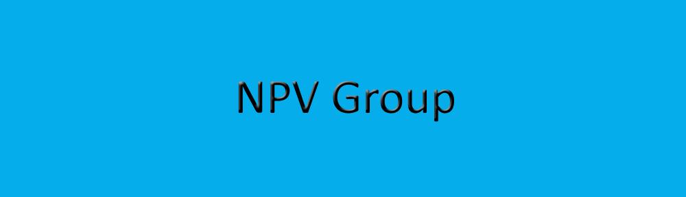 thenpvgroup.com